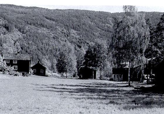 I 1925 bygde Ragnhild Aasåren nytt tømra våningshus på garden til foreldrene og startet pensjonat. Bildet er hentet fra Norske Gardsbruk, 1998.